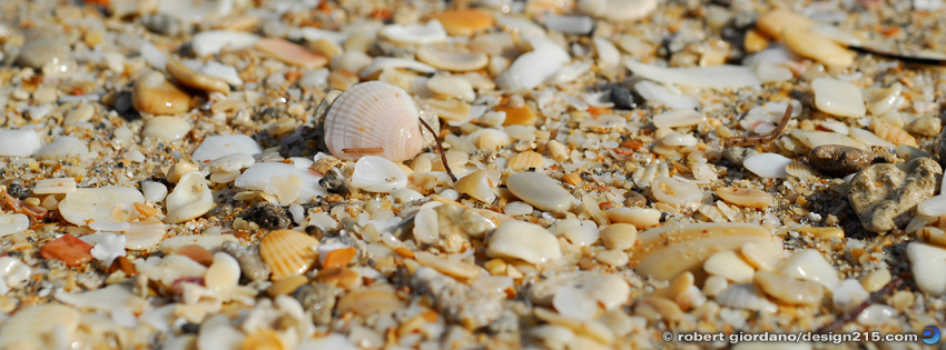 Free Facebook Cover Photos - Sand and Seashells, photo by Robert Giordano